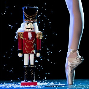 DDS 2018 SE Nutcracker Two Shows in One Box